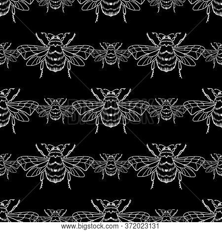 Vector Seamless Pattern With White Honey Bee On A Black Background. Bumblebee, Beehive.