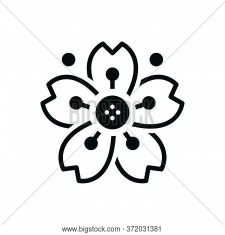 Black Solid Icon For Cherryblossom Cherry Blossom  Etching Flower
