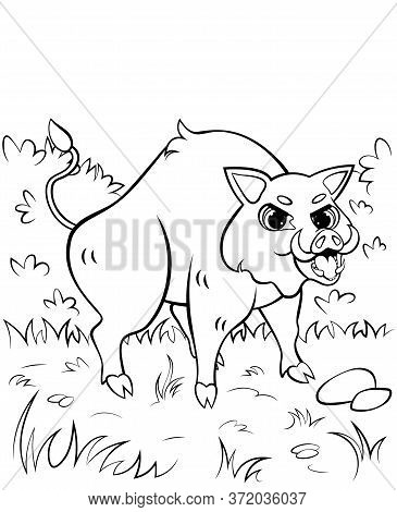 Coloring Page Outline Of Angry Cartoon Hog Or Boar Attacking. Vector Image With Nature Background. P