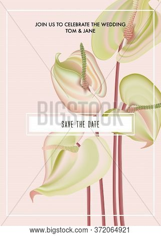 Watercolor Anthurium Flower Save The Date Card. Botanical Flower Print Bouquet Holiday Greeting, Big