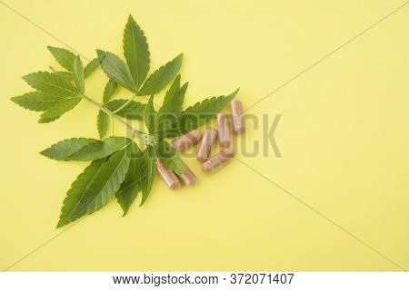 Cannabis Leaves With Capsules Pill On Yellow Background. Alternative Medicine, Medical Hemp Extract