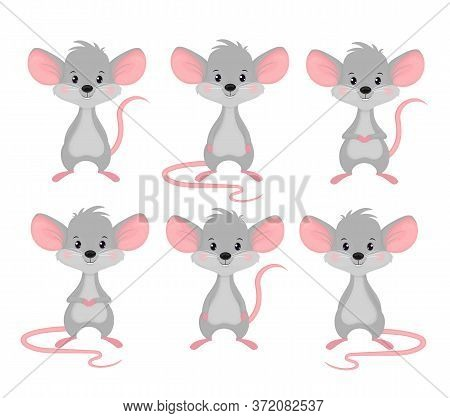 Set Of Mice In Different Poses. A Grey Rodent With Large Ears And A Long Tail. Rat Is A Cute Vector
