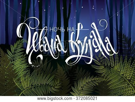 Night Before Midsummer Lettering In Russian. Mystery Night Foggy Forest With Forest Fern Vector Illu