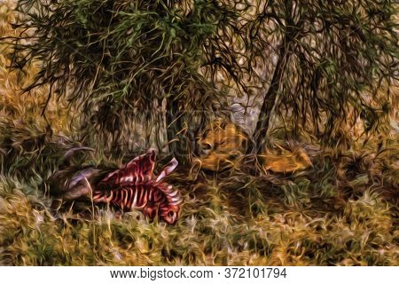Lion Hidden In The Green Bush And Carcass On The Serengeti National Park. A Conservation Area In The