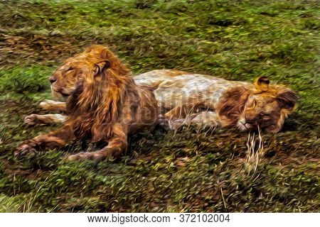 Lions Lying Lazily Over Green Grass In The Flat Landscape Of Serengeti National Park. A Conservation