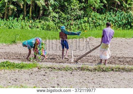 Jamuna, Bangladesh - November 7, 2016: Peasant Family On A Char Sandbank Island In Jamuna River Near