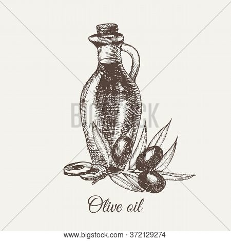Hand Drawn Pencil Bottle Of Olive Oil. Still Life Of Olive Oil In A Glass Jar And Sprigs Of Fresh Ol