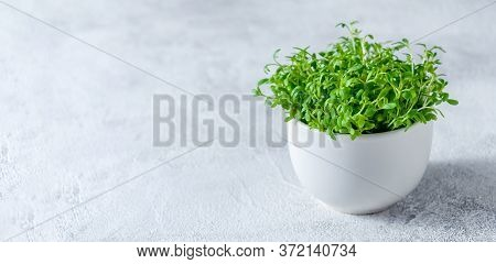 Close Up Watercress Microgreens In Little White Bowl On Light Background