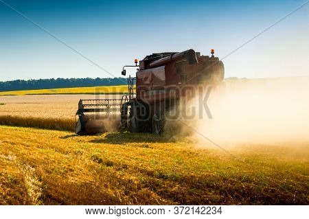 Red Combine Harvester In Wheat Field, Green Combine Harvesting Field Crops