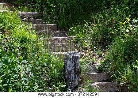 Stone Stairway Climbing High Into The Green Forest