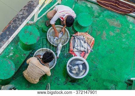 Morrelganj, Bangladesh - November 19, 2016: Cleaning Of Fish Aboard A Passenger River Ship, Banglade