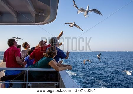 Thassos / Greece - 10.28.2015: People Trying To Feed The Seagulls From The Deck Of An Island Ferry,