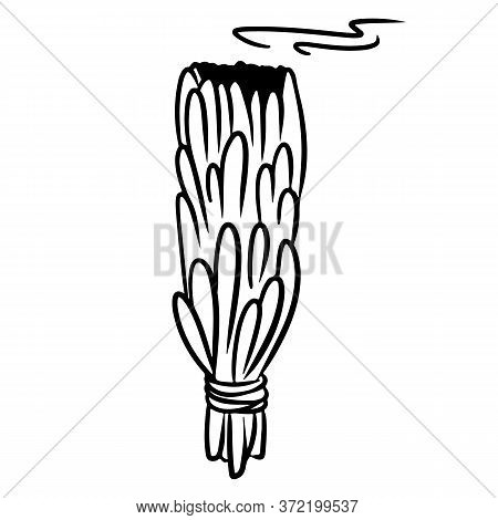 Sage Stick Hand Drawn Smudge Doodle. Vector Isolated Cartoon White Sage Herb Bundle. Smoking Cleansi