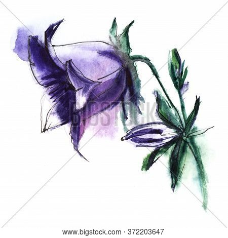 Watercolor Beautiful Purple Bluebell On White Background With Blurry Paint Stains. Elegant Flower Wi