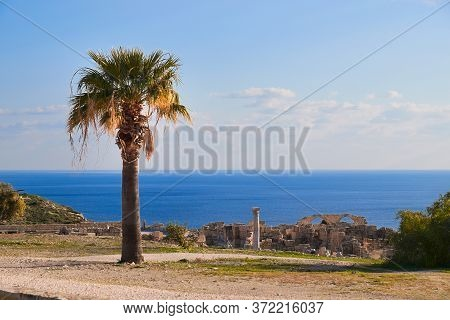 Archaeological Ruins Of Kourion In Cyprus, A Palm Tree Ruins With Roman Arches By The Seaside