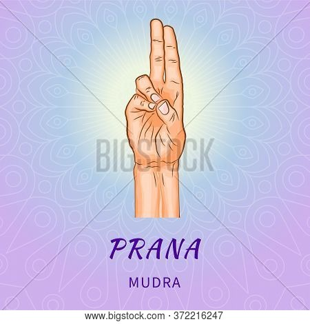 Prana Mudra - Gesture In Yoga Fingers. Symbol In Buddhism Or Hinduism Concept. Yoga Technique For In
