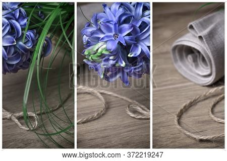 Creative Springtime Collage, Three Panels With Fragments Of Fragrant Blue Pearl Hyacinth Flowers, Li
