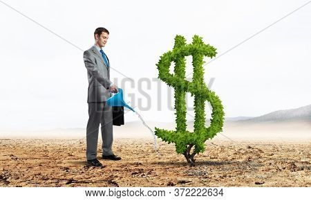 Entrepreneur Watering Green Plant In Shape Of Dollar Sign In Desert. Business Growth And Development