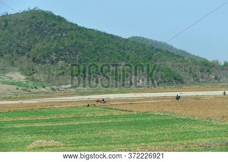 Countryside Landscape, North Korea. Peasants, Dirt Road, Cultivated Agricultural Field And Mountains
