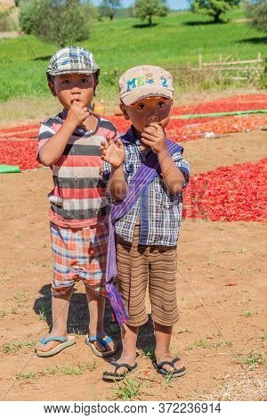 Kalaw, Myanmar - November 25, 2016: Village Children And Drying Chilli Peppers In The Area Between K