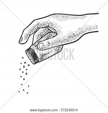 Salt And Pepper Shaker In Hand Sketch Engraving Vector Illustration. T-shirt Apparel Print Design. S