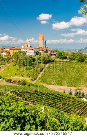 Barbaresco village and vineyards, Unesco Site, Piedmont, Northern Italy