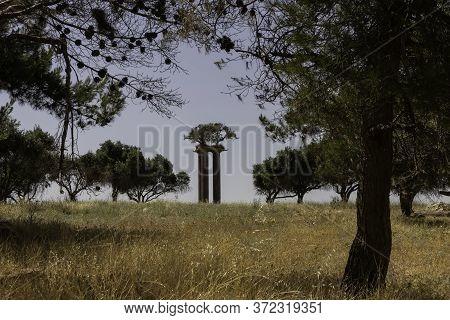 Ramat Rachel, Israel - June 6th, 2020: The Olive Columns Park In Ramat - Rachel Kibbutz In Jerusalem