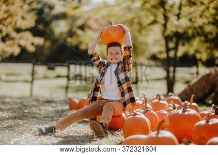 Cute Young Boy Posing With Big Pumpkin At The Pumpkins Field. Copy Space
