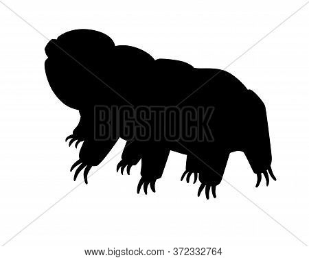 Tardigrades Is A Vector Silhouette Picture For A Logo Or Sign With A Microscopic Animal. The Silhoue