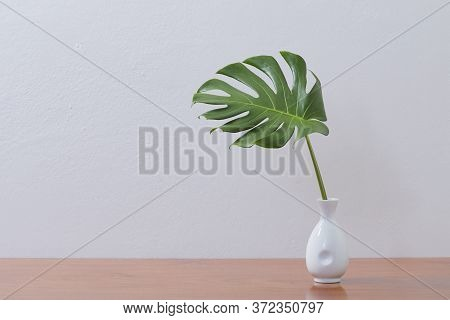 Blank Wall With Monstera Leaf In Vase, Indoor Plant Mockup
