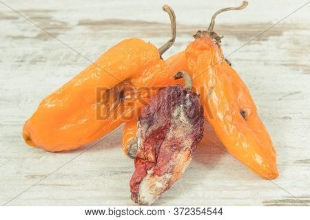 Old Wrinkled Peppers With Mold On Old Rustic Background. Concept Of Unhealthy And Disgusting Food