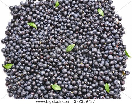A Close-up On Bilberries, European Blueberries Background As A Concept Of Vitamin Product And Health