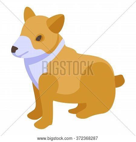 Canine Corgi Dog Icon. Isometric Of Canine Corgi Dog Vector Icon For Web Design Isolated On White Ba
