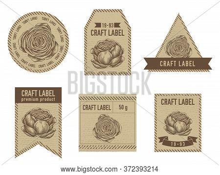 Craft Labels Vintage Design With Illustration Of Ranunculus Stock Illustration