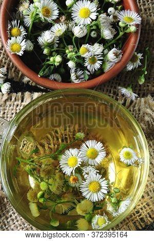 Chamomile Tea In A Glass Mug. Fresh Chamomile Tea. Herbal Medicinal Tea. Diet Tea. Banner.