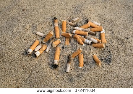 Used Cigarette Butts Discarded On Sandy Sea Beach, Ecosystem Habitat Pollution