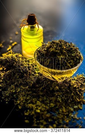 Shot Of Essential Oil Of Kasuri Methi Or Dried Fenugreek In A Glass Bottle Along With Some Dried Pow