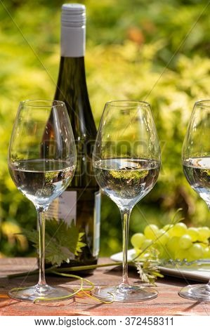 Quality Wine Tasting On Winery In Mosel Wine Redion In Germany, Three Glasses And One Bottle Of Ries