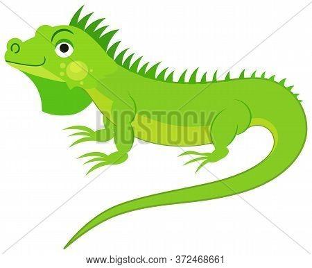 Cute Green Iguana Isolated On White Background. Flat Vector Illustration.