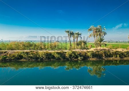 Egyptian countryside near the Nile irrigation canal . Green landscape,  palm trees in the Nile Valley. Egypt.