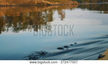 Outdoor Activities, Close-up Of A Yellow Oar Rowing On Calm Water Against A Background Of Sunset Ray