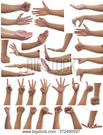 Multiple Set Of Adult Person Hands Gestures Isolated On White Background, Human Body Part Design Ele