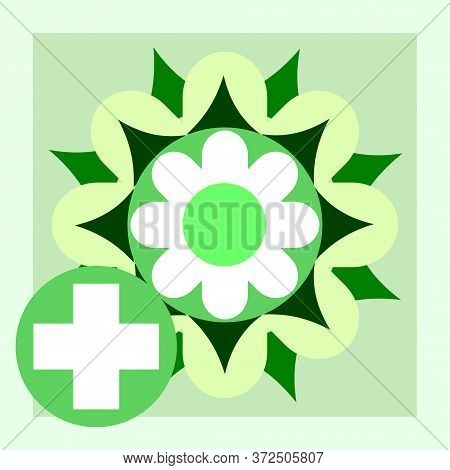 Medicinal Flowers. Vector. Natural Traditional Medicine. Banner, Graphic Button For The Site Menu. S