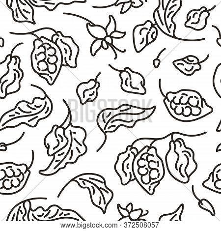Cocoa Seamless Pattern. Art Line Vector Fruit, Leaf, Bean, Flower. Hand Drawn Sketch. Black Illustra