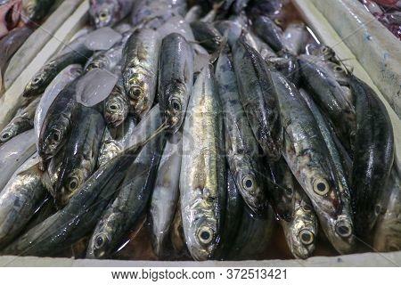Fresh Seafood On Ice At The Fish Market. Fresh Fish Selling In The Fish Market In Jimbaran - Traditi