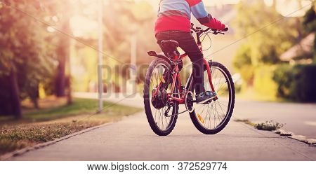Child On A Bicycle In The Evening