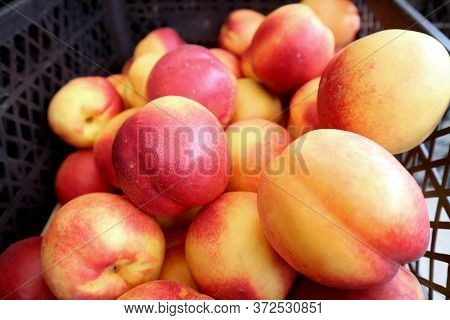 Pile Of Fresh Ripe Organic Nectarine Fruits In A Basket