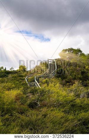 A Stairway Winding Through Green Shrubbery To A Hilltop