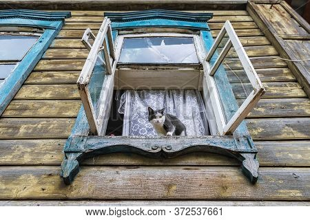 Black And White Cat Sits In The Open Window Of A Wooden Apartment Building