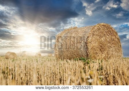 Straw Rolls, Straw Bale On Farmer Field And Sunset With Dramatic Cloudy Sky, Beautiful Nature After
